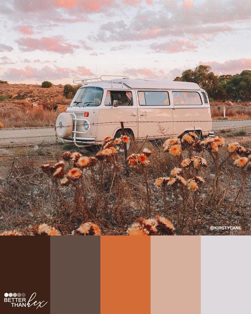 Desert Vibes Color Palette