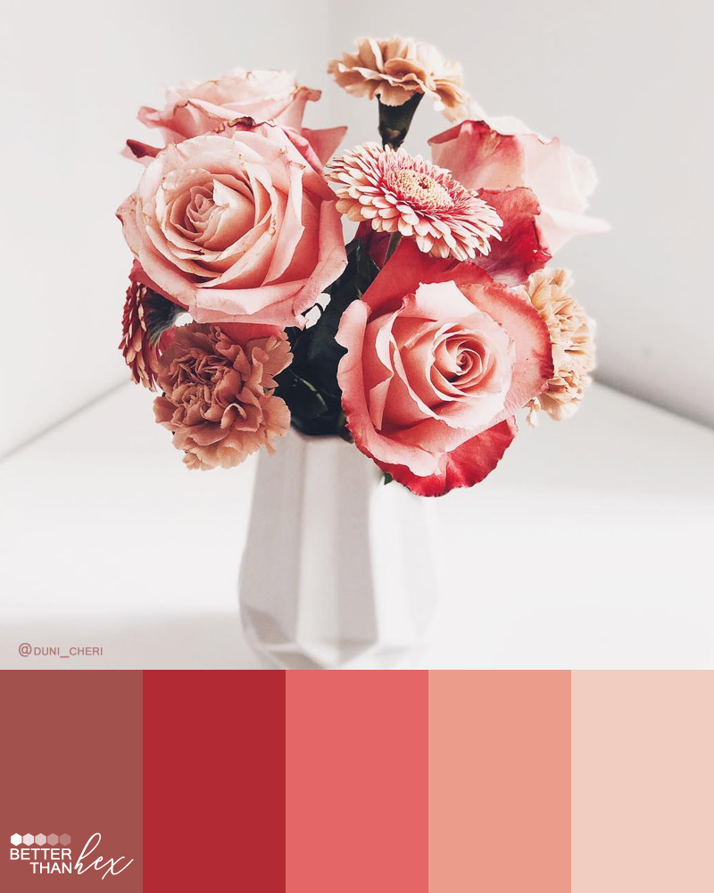 Bluch Pink Flower Color Palette