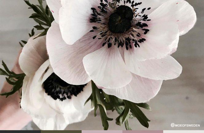 Subdued Floral Tones
