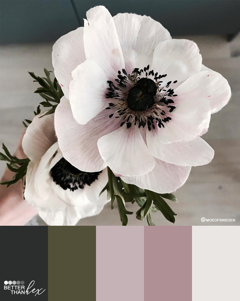 Subdued Floral Tones