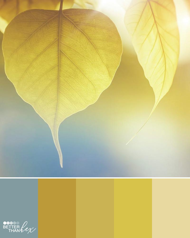 Yellow Color Palette